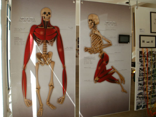 Life sized poster of pronghorn antelope and gibbon human hybrid skeletons at D&AD exhibition